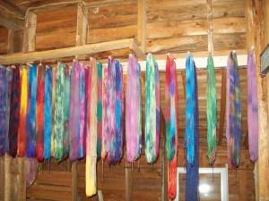 Dyeing to go to Washington 032