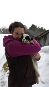 Our good friend (and fellow Jacob breeder) Amanda St. Peter with Catawampus Luna